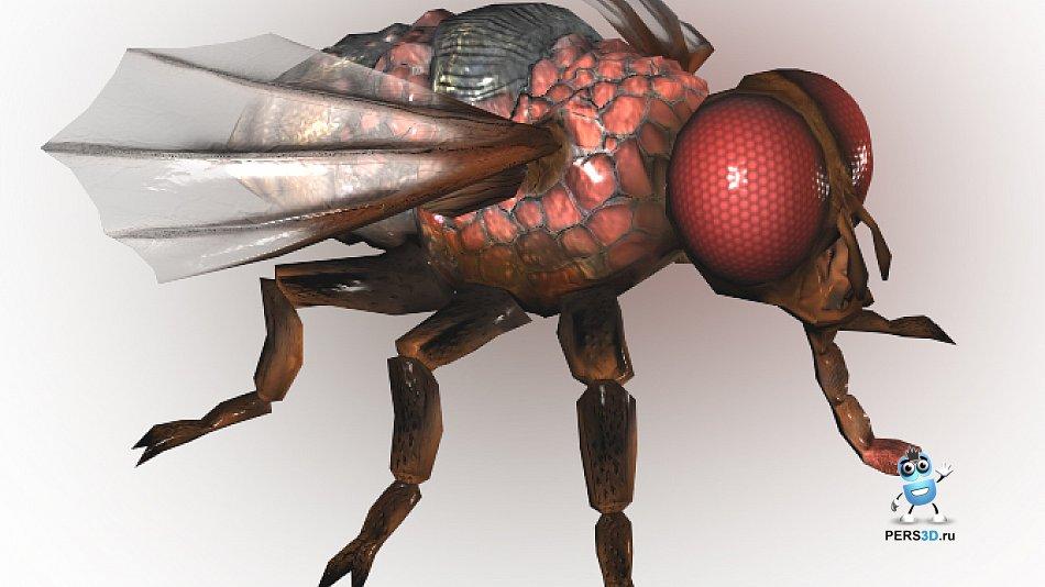лоуполи модель мухи для игры SZone Online